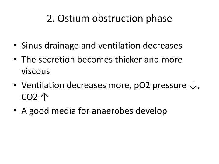 2. Ostium obstruction phase