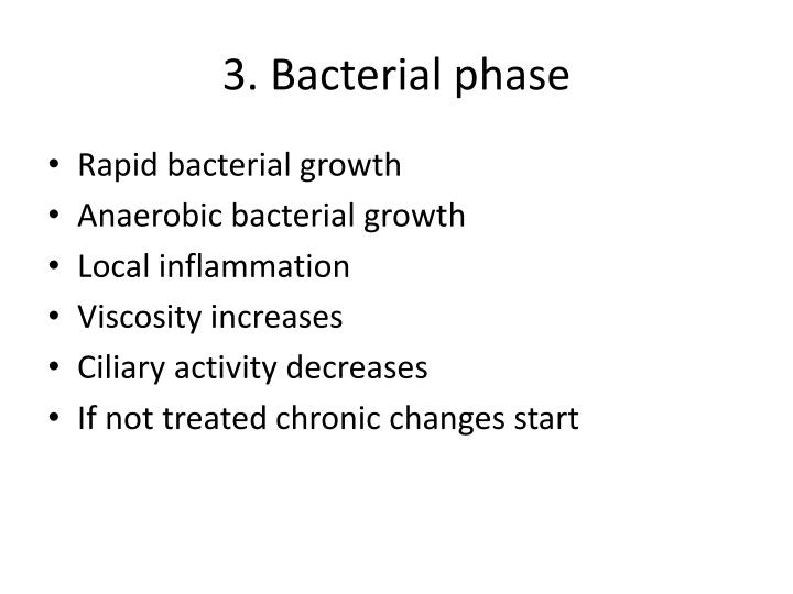 3. Bacterial phase