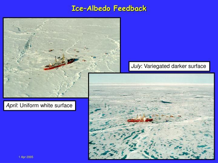 Ice–Albedo Feedback