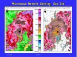 microwave remote sensing sea ice