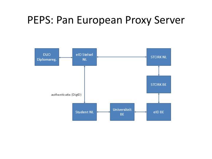PEPS: Pan European Proxy Server