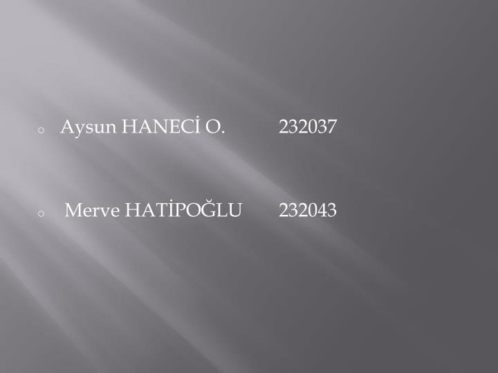 Aysun HANECİ O.232037