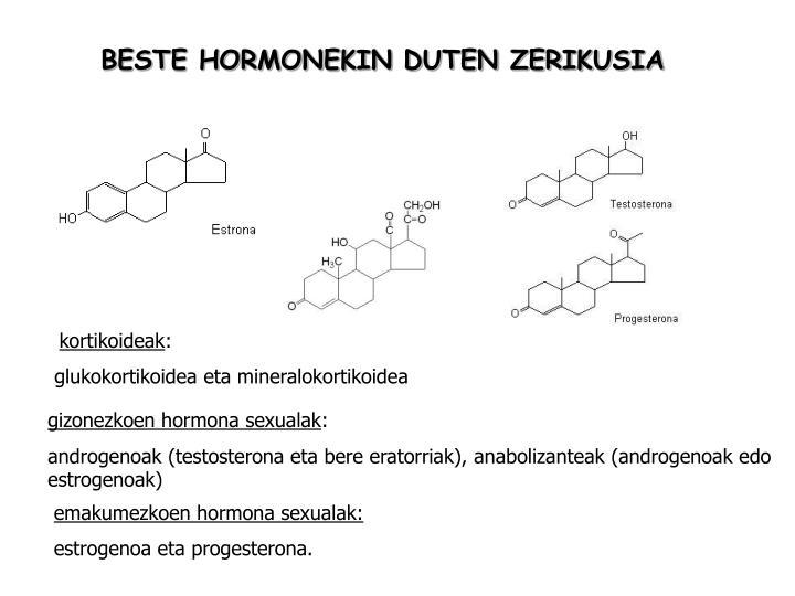 BESTE HORMONEKIN DUTEN ZERIKUSIA