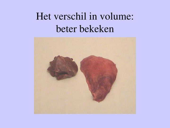 Het verschil in volume:         beter bekeken