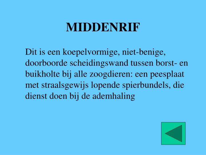 MIDDENRIF