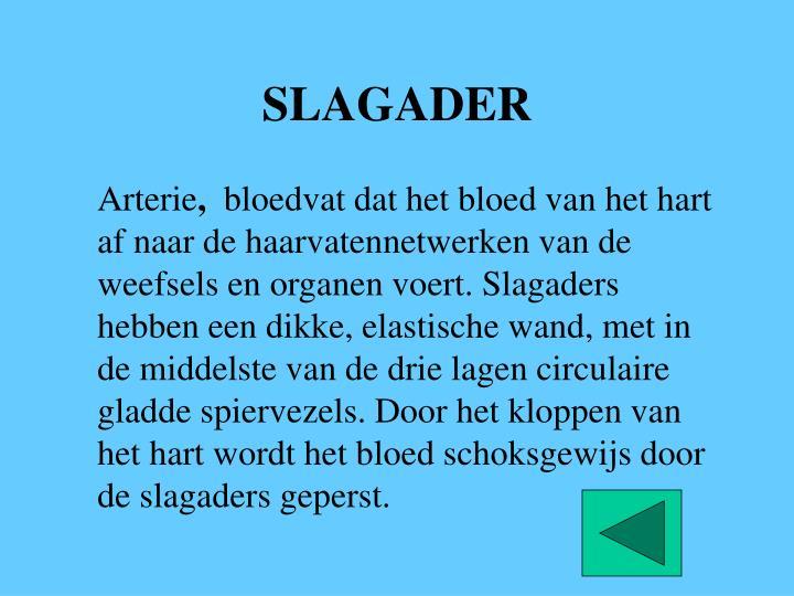 SLAGADER