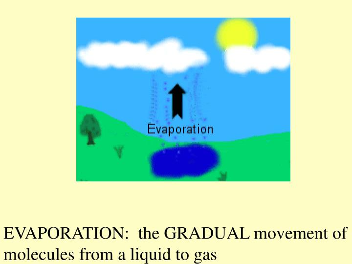 EVAPORATION:  the GRADUAL movement of molecules from a liquid to gas