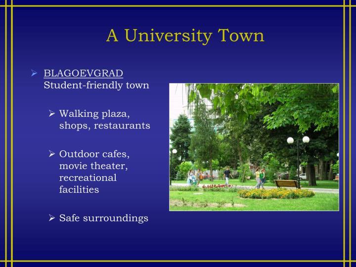 A University Town