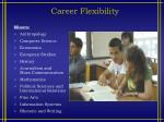 career flexibility