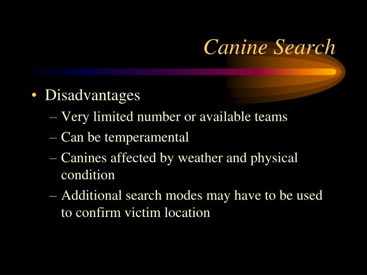 Canine Search
