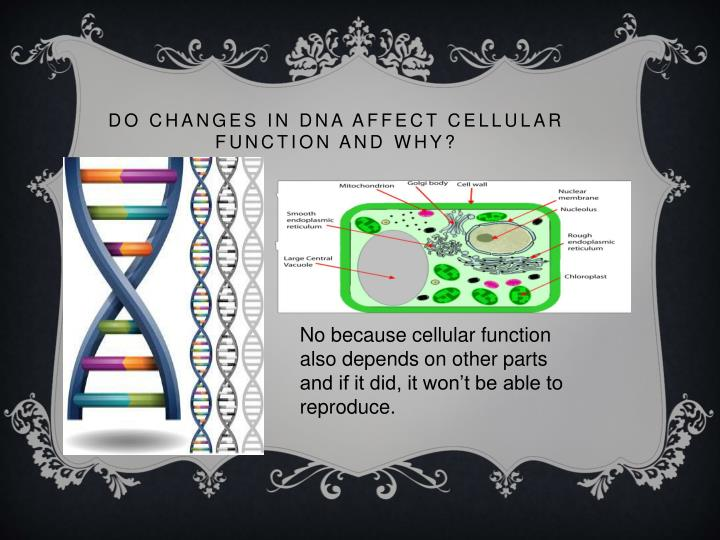 do changes in dna affect cellular
