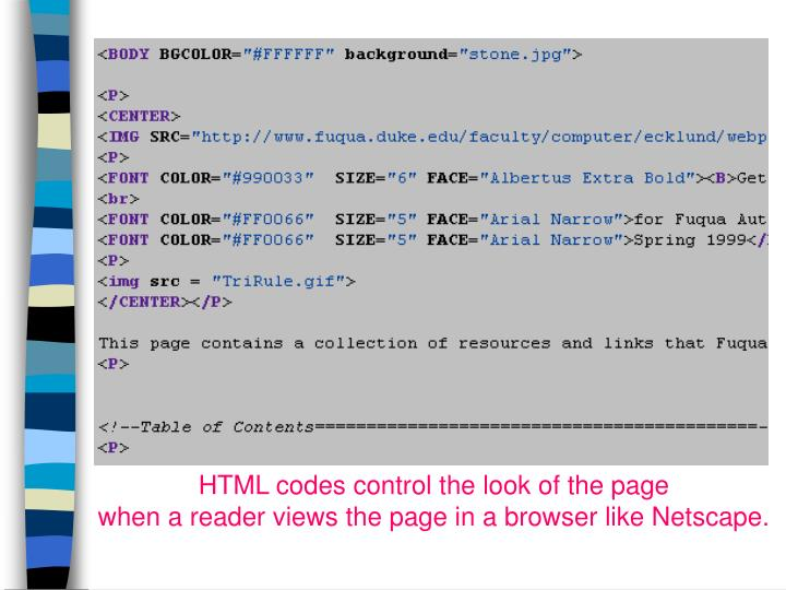 HTML codes control the look of the page