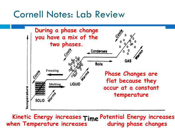 Cornell Notes: Lab Review