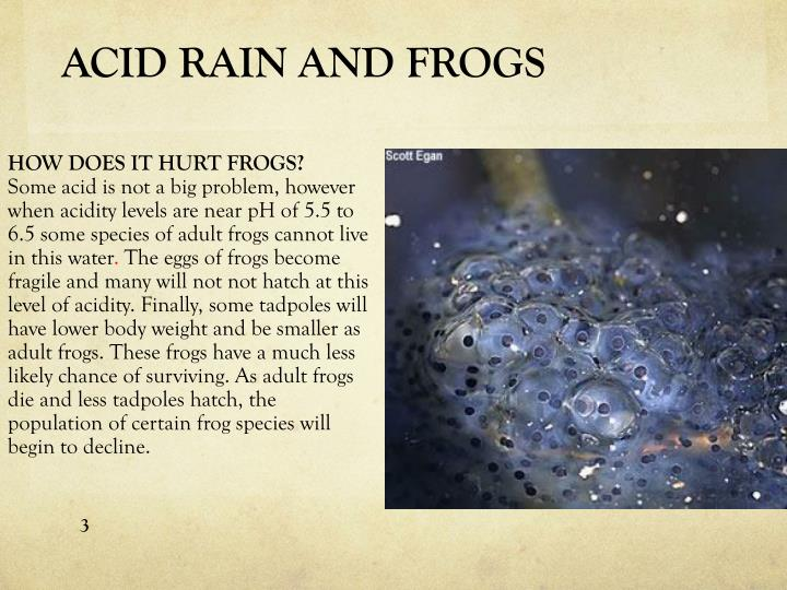 ACID RAIN AND FROGS