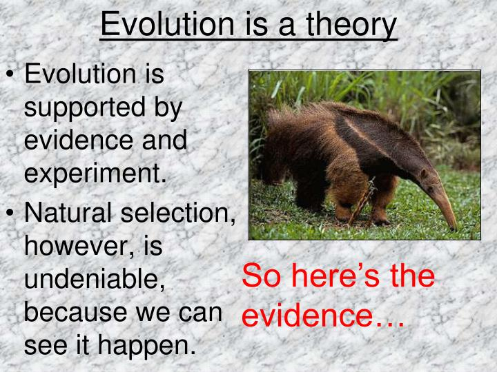 Evolution is a theory