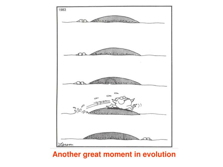 Another great moment in evolution