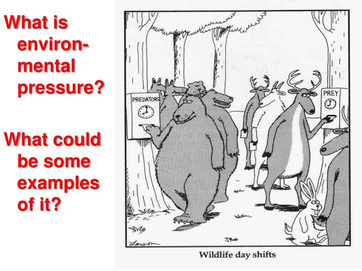What is environ-mental pressure?
