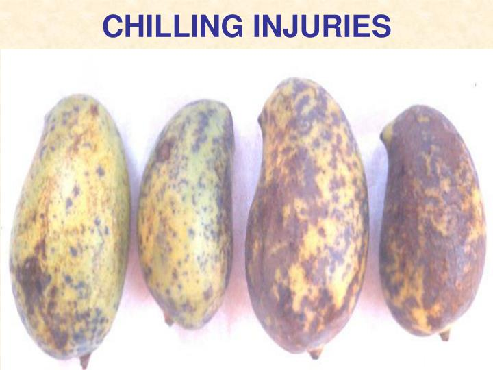 CHILLING INJURIES