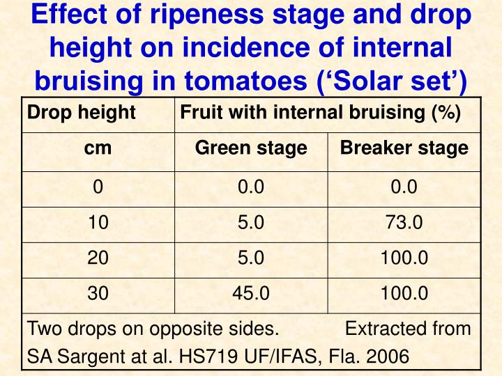 Effect of ripeness stage and drop height on incidence of internal bruising in tomatoes ('Solar set')