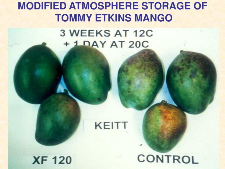 MODIFIED ATMOSPHERE STORAGE OF