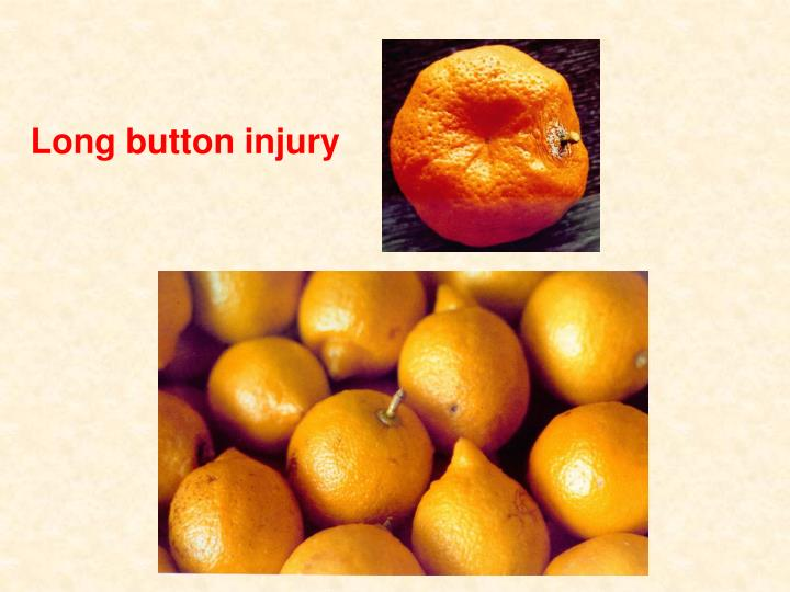 Long button injury