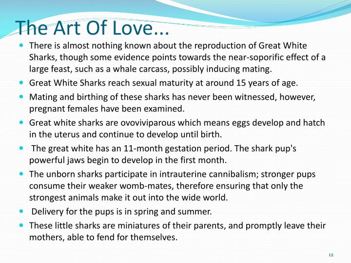 The Art Of Love...