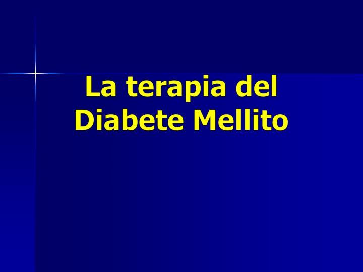 La terapia del Diabete Mellito