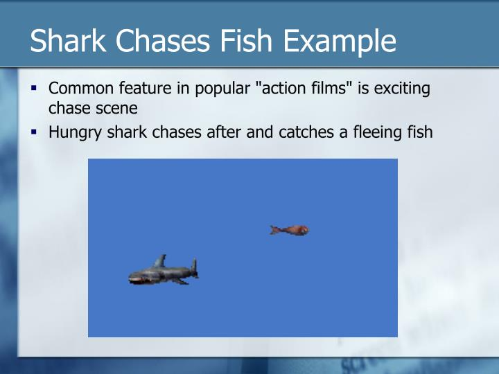 Shark Chases Fish Example