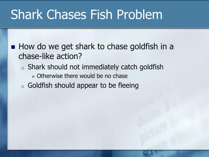 Shark Chases Fish Problem
