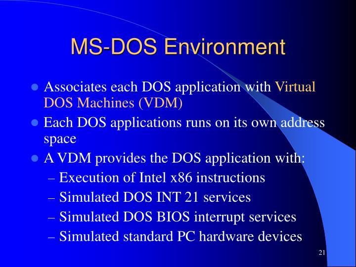 MS-DOS Environment