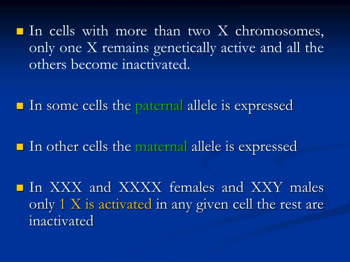 In cells with more than two X chromosomes, only one X remains genetically active and all the others become inactivated.