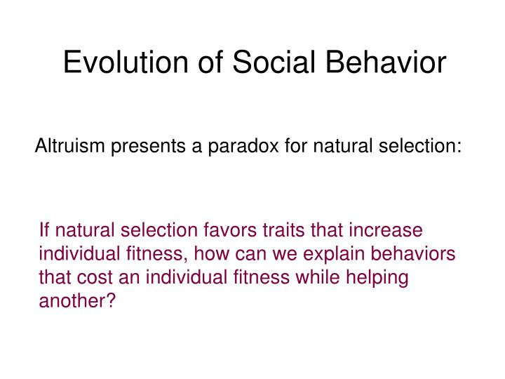 Evolution of Social Behavior