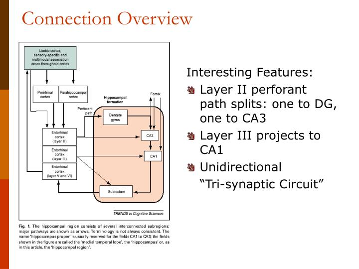 Connection overview