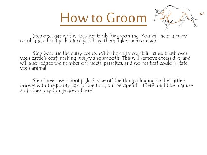 How to groom