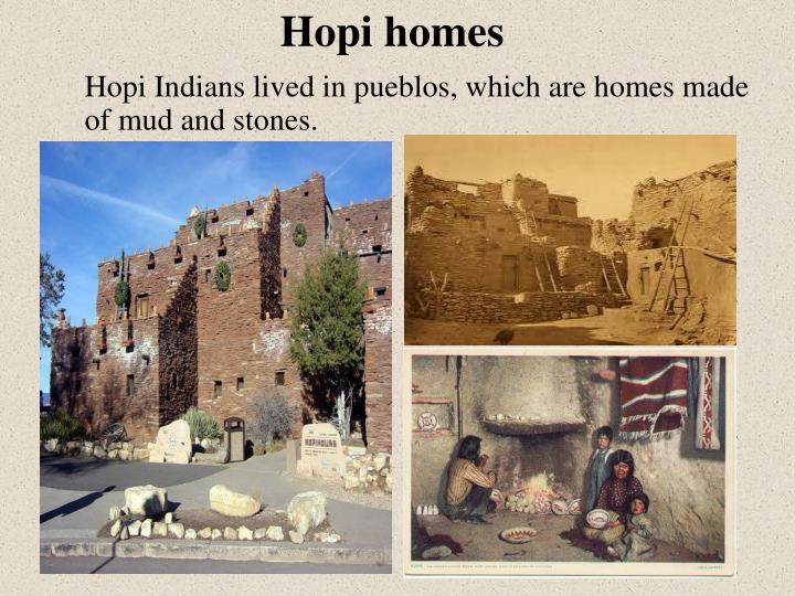 Hopi Indians lived in pueblos, which are homes made of mud and stones