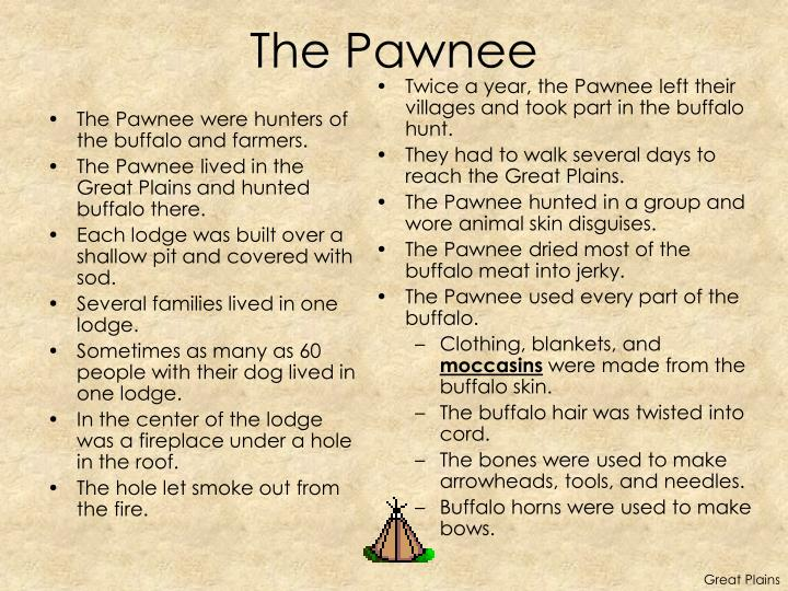 The Pawnee were hunters of the buffalo and farmers.