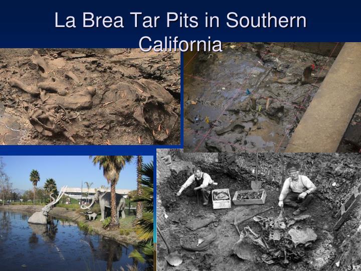 La Brea Tar Pits in Southern California