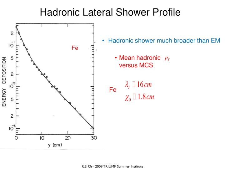 Hadronic Lateral Shower Profile