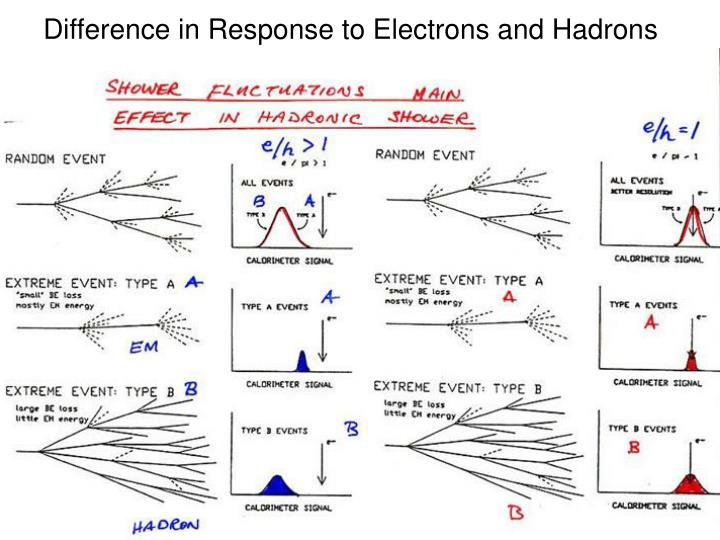 Difference in Response to Electrons and Hadrons