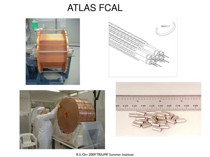 ATLAS FCAL