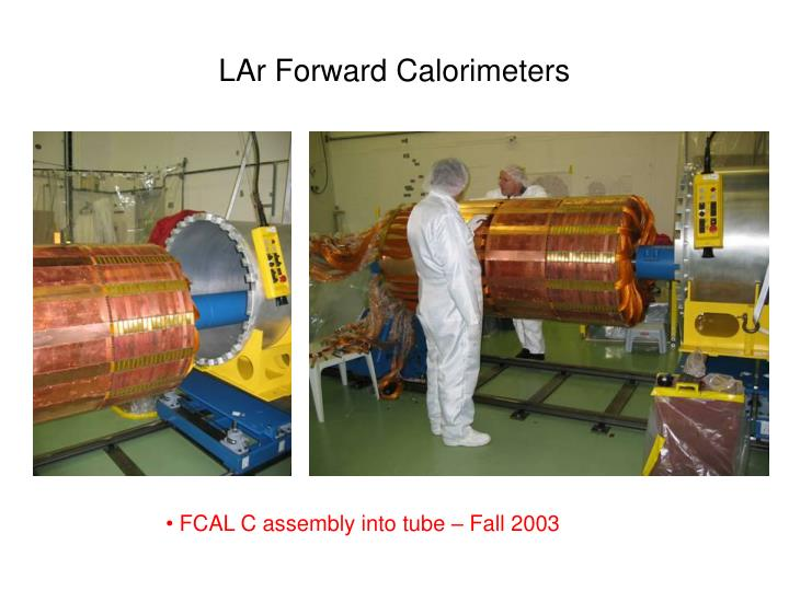 LAr Forward Calorimeters