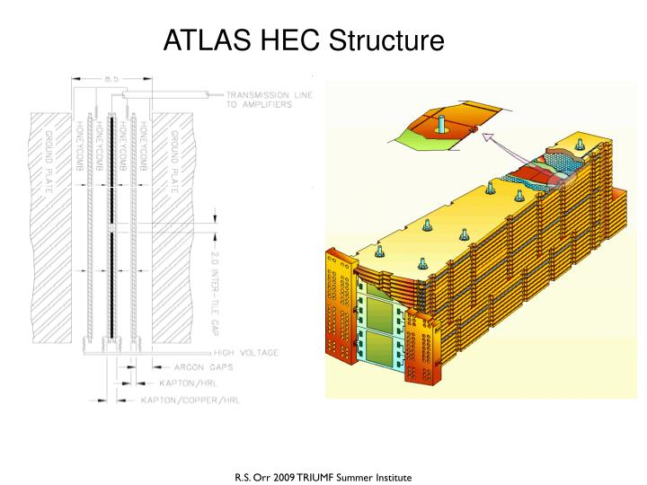 ATLAS HEC Structure