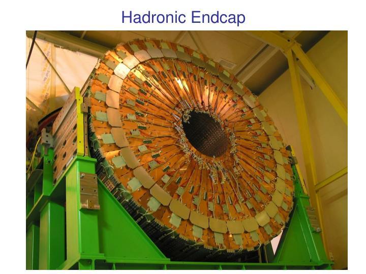 Hadronic Endcap