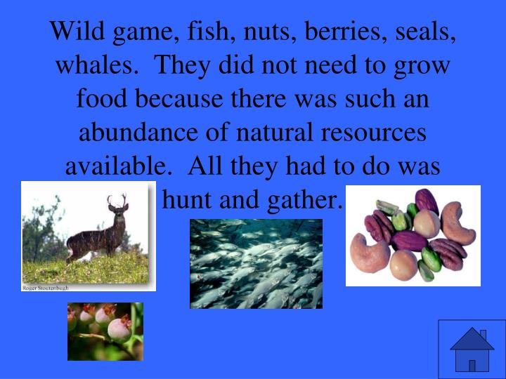 Wild game, fish, nuts, berries, seals, whales.  They did not need to grow food because there was such an abundance of natural resources available.  All they had to do was hunt and gather.
