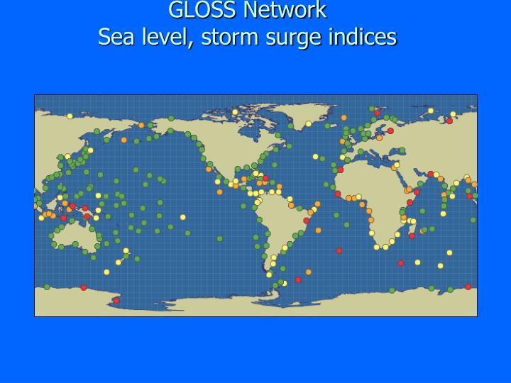 GLOSS Network