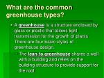 what are the common greenhouse types