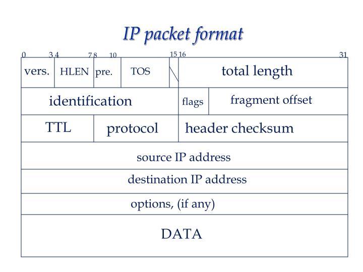 Ip Packet Diagram - 365 Diagrams Online on