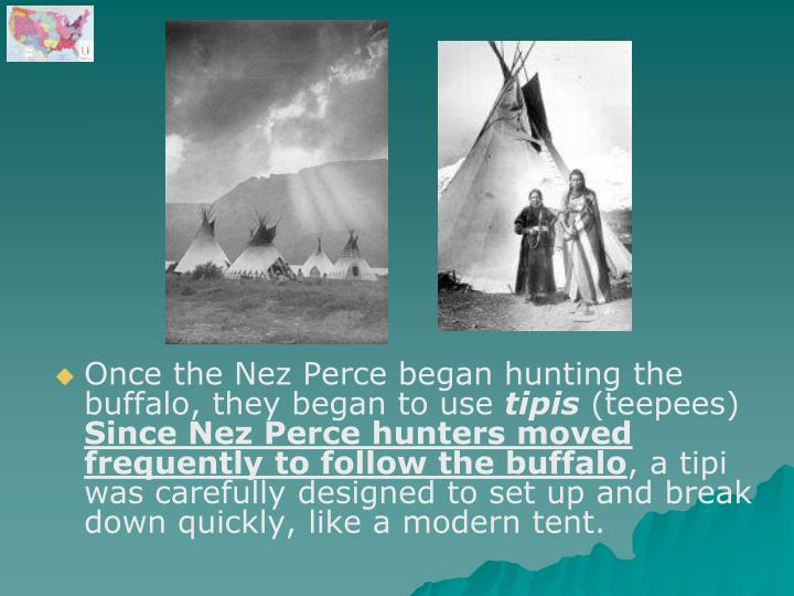 Once the Nez Perce began hunting the buffalo, they began to use