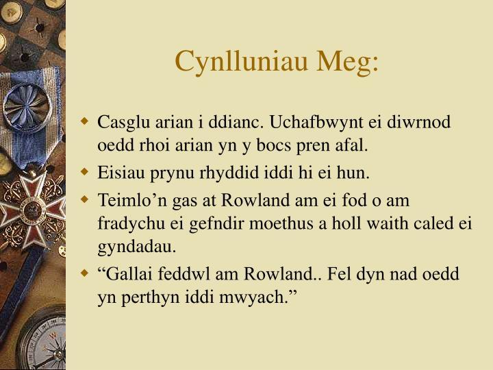 Cynlluniau Meg: