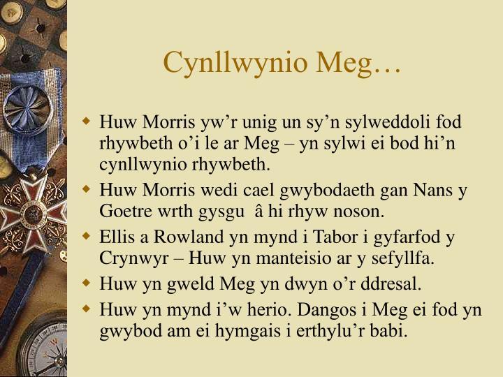 Cynllwynio Meg…